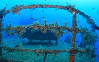 Ibiza bajo el mar, un mundo por descubrir